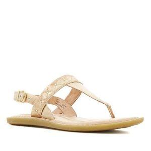 NWOB Born Garren Leather Thong Sandal in Gold 10